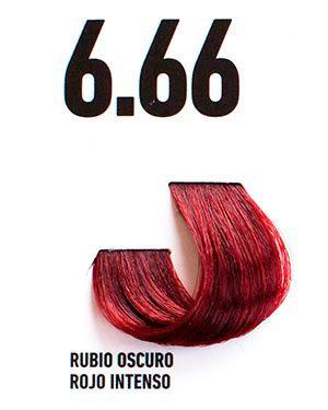 REDS Intense Dark Blond 6.66